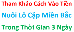 Cach- vao- tien- nuoi- lo- song- thu- khung- 3- ngay